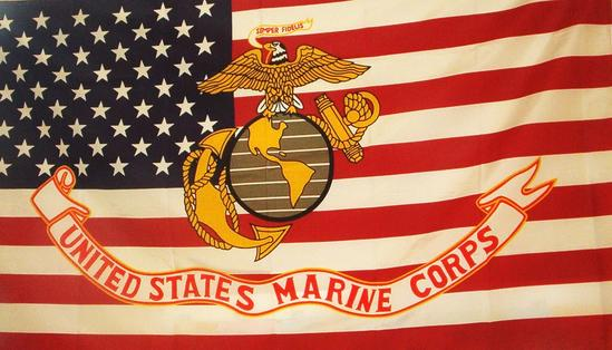 Marines Usmc Logo On Usa Flag 3 X 5 Flag Flagsandstuff